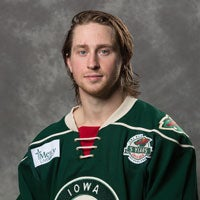 AHL: Lakeville, MN Native Kloos Recalled By Wild