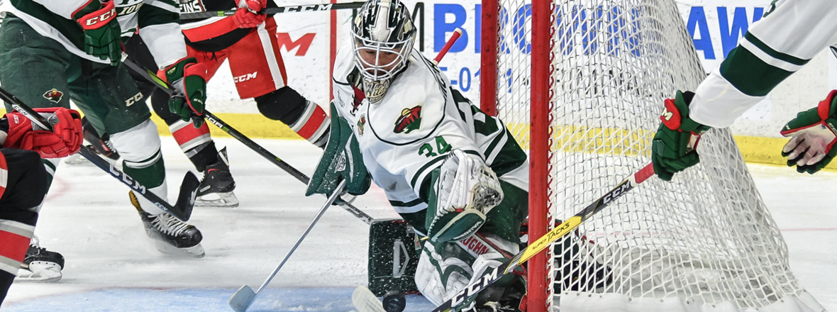 MINNESOTA RECALLS GOALIE STEVE MICHALEK FROM IOWA