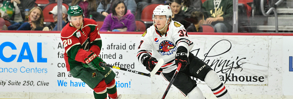 JOHNSON, DUMONT BRING LEADERSHIP, EXPERIENCE TO WILD ORGANIZATION