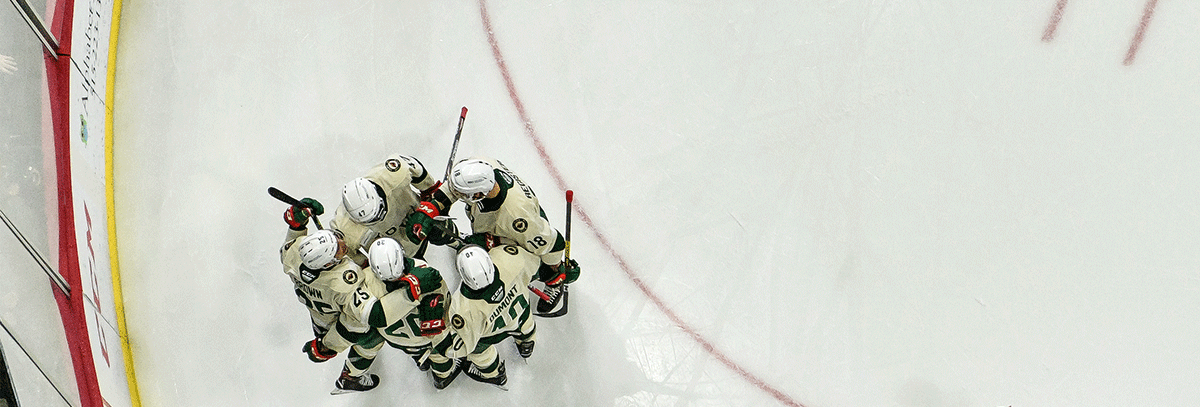 AFTER WEEKEND SPLIT, WILD LOOKING FOR POWER PLAY IMPROVEMENT