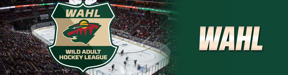 Minnesota Wild Adult Hockey League