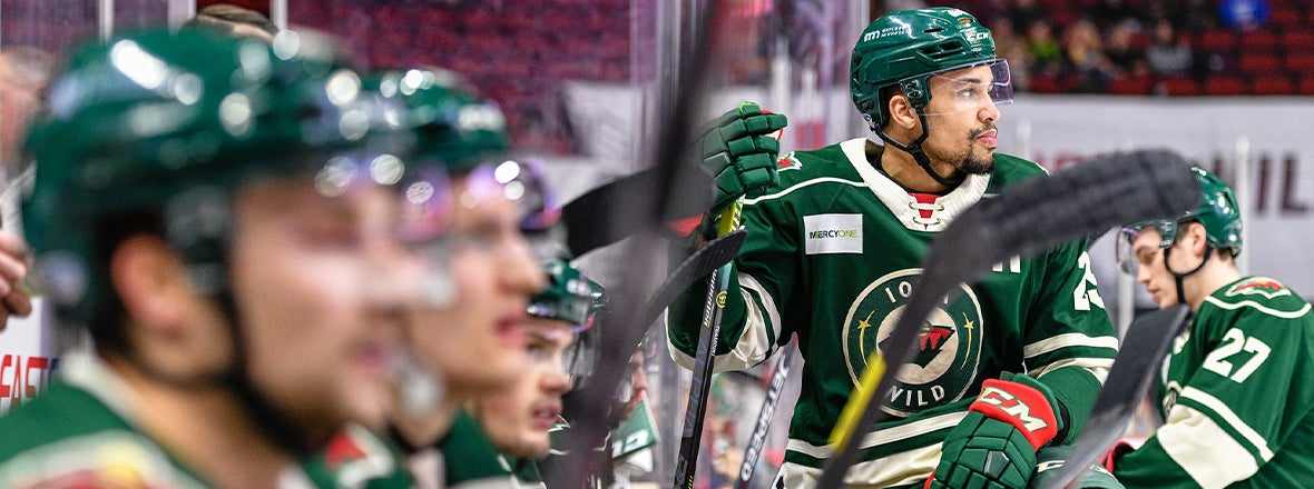 THE WILD WIRE: MEET THE NEW GUYS