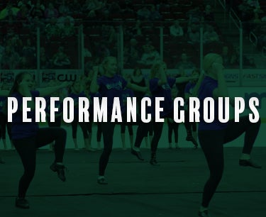 performanceGroups Promo.jpg